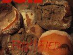 Soil  –  Fructified