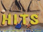 Viva Hits Vol. 21